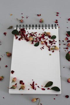 Background Notebook Note Write