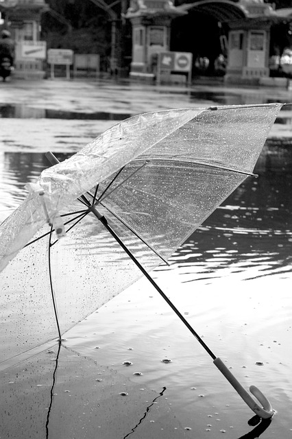 Clear Umbrella Transparent Japan spring rains