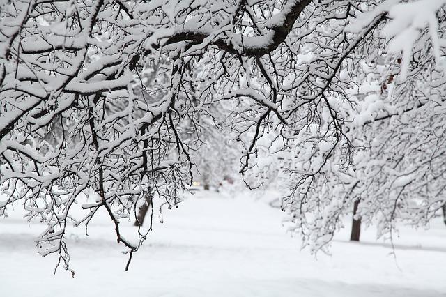 Russian Winter White Snow